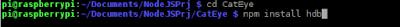 HANA CatEye! Experimental Project with NodeJS + MongoDB + RaspberryPI3