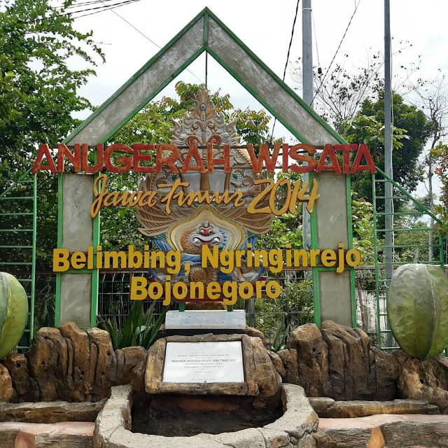agrowisata belimbing bojonegoro