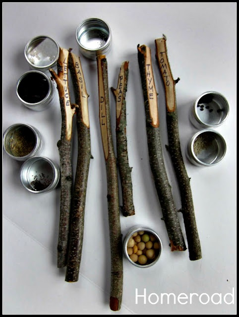 seeds and sticks with herb names