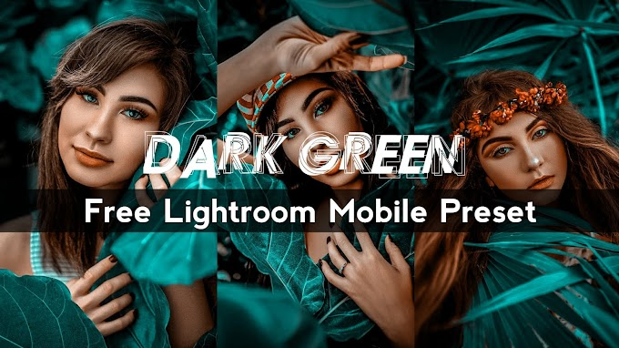 Dark Green Lightroom Mobile Presets Free Download