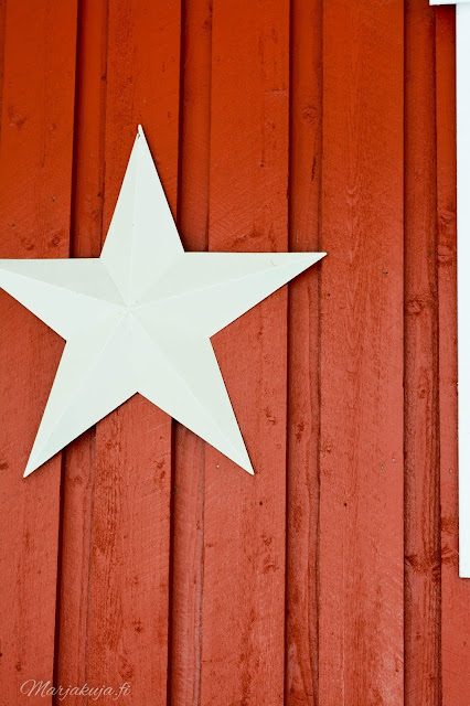 punainen red makrokuva blogi valokuvaus