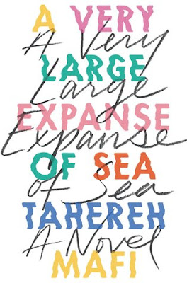 https://www.goodreads.com/book/show/38720939-a-very-large-expanse-of-sea