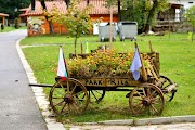 Expect the unexpected in the charming town of Dupnitsa