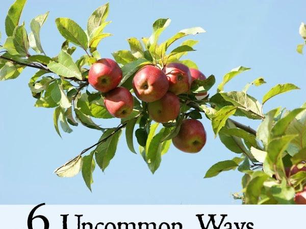 5 Uncommon Ways to Use Apples