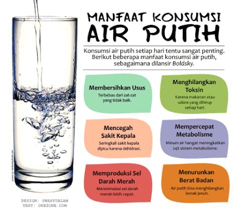 Mulai Membiasakan Minum Air Putih