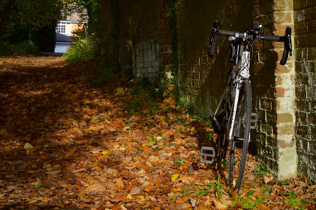 Copthorne on Monday autumn leaves bike against a wall