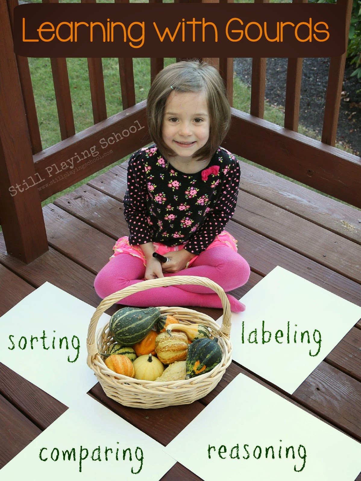 Learning With Gourds Comparing Sorting And Labeling For Fall
