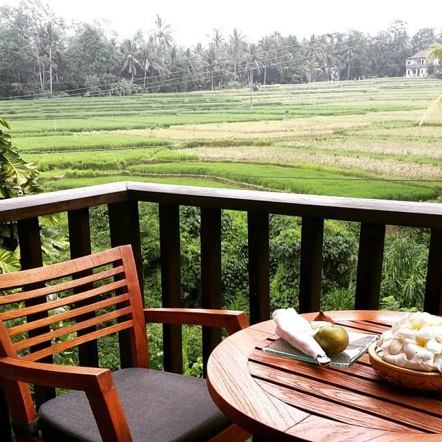 photo paddies view in maya ubud