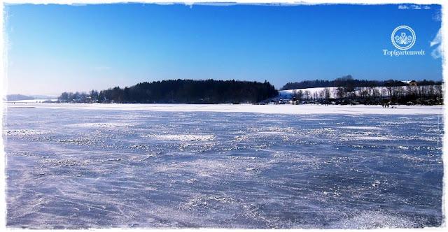 Gartenblog Topfgartenwelt Eislaufen: Wallersee zugefroren, Winter 2017