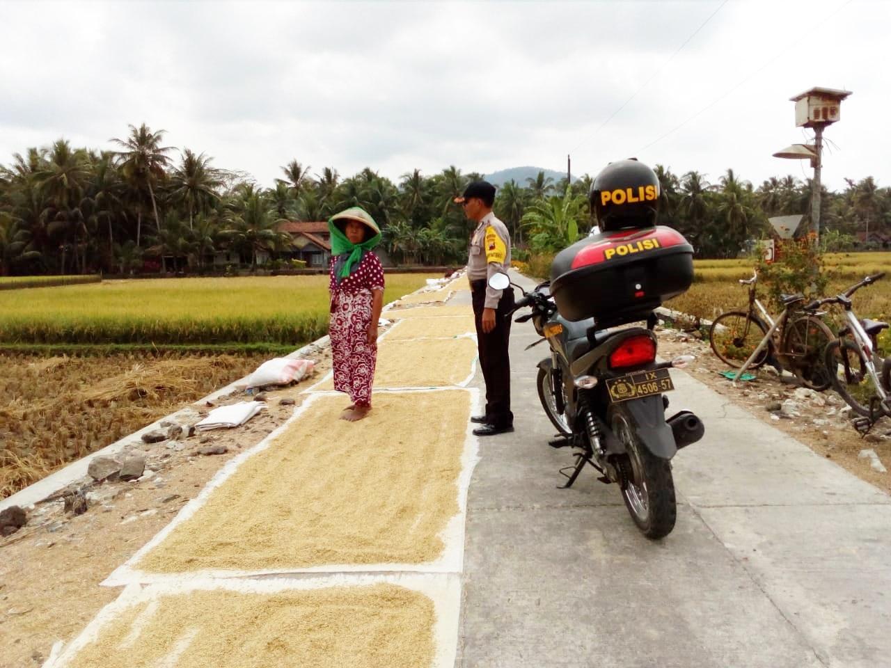 Rawan Pencurian, Polres Kebumen Imbau Petani Simpan Gabah di dalam Rumah