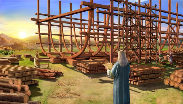 construcción-arca
