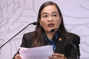coordinadora de la bancada del PRD, Verónica Juárez Piña