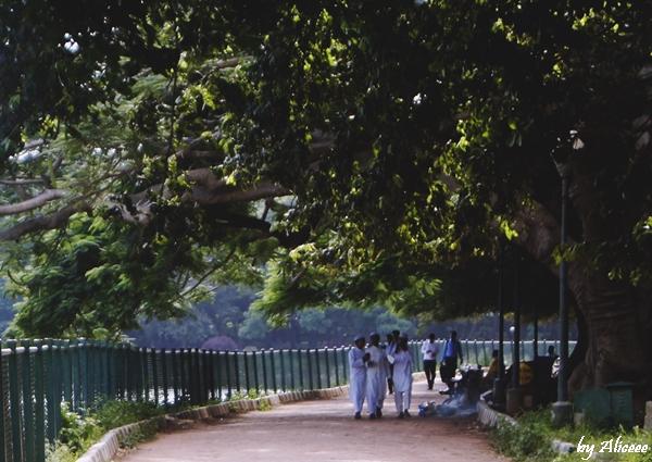 Bangalore-indieni-gradina-botanica