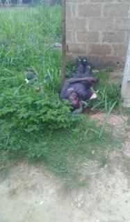 Militants attack Ikorodu communities