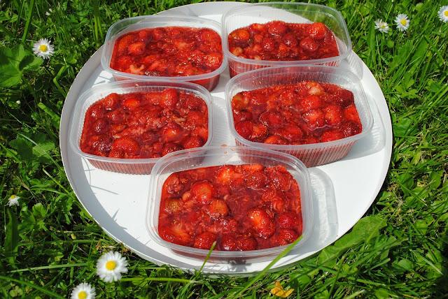 Maasika toormoos