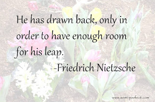 He has drawn back, only in order to have enough room for his leap. -Friedrich Nietzsche