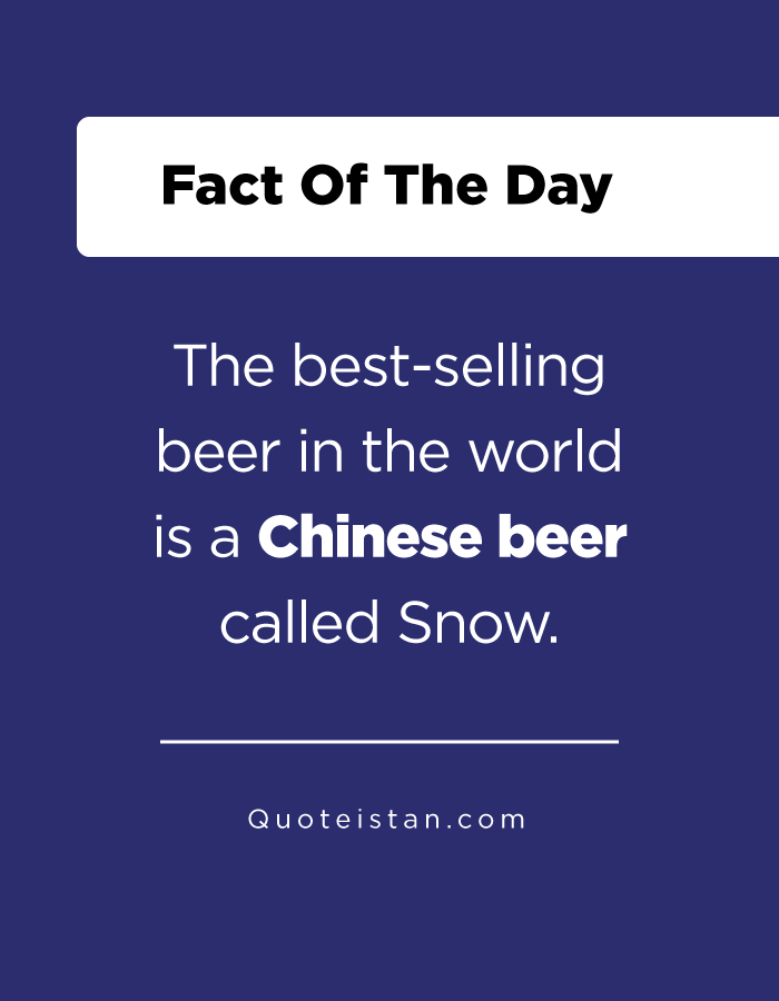 The best-selling beer in the world is a Chinese beer called Snow.