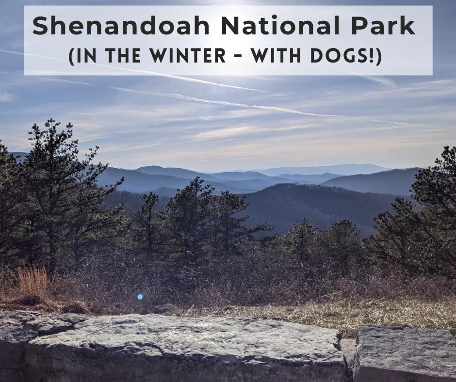 Shenandoah National Park Winter