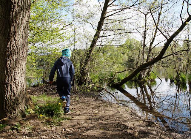 Küsten-Spaziergänge rund um Kiel, Teil 6: Der Rundweg um den Langsee. Ich zeige Euch auf Küstenkidsunterwegs die Strecke um den wunderschönen See in Schleswig-Holstein, den wir mit unseren Kindern umrundet haben!