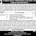 Punjab Social Protection Authority (PSPA) Lahore Jobs