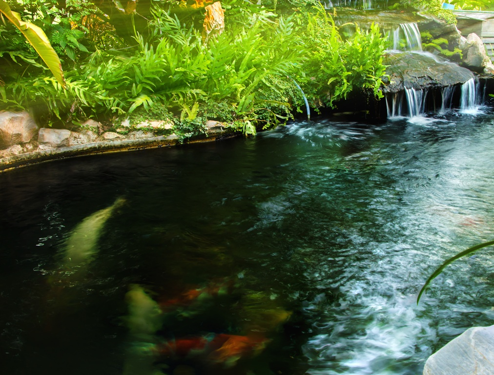 Xing Fu Feng Shui Water Features That Refresh And