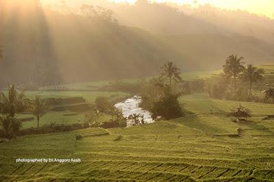 Beautiful ROL in Tenjowaringin Tasikmalaya