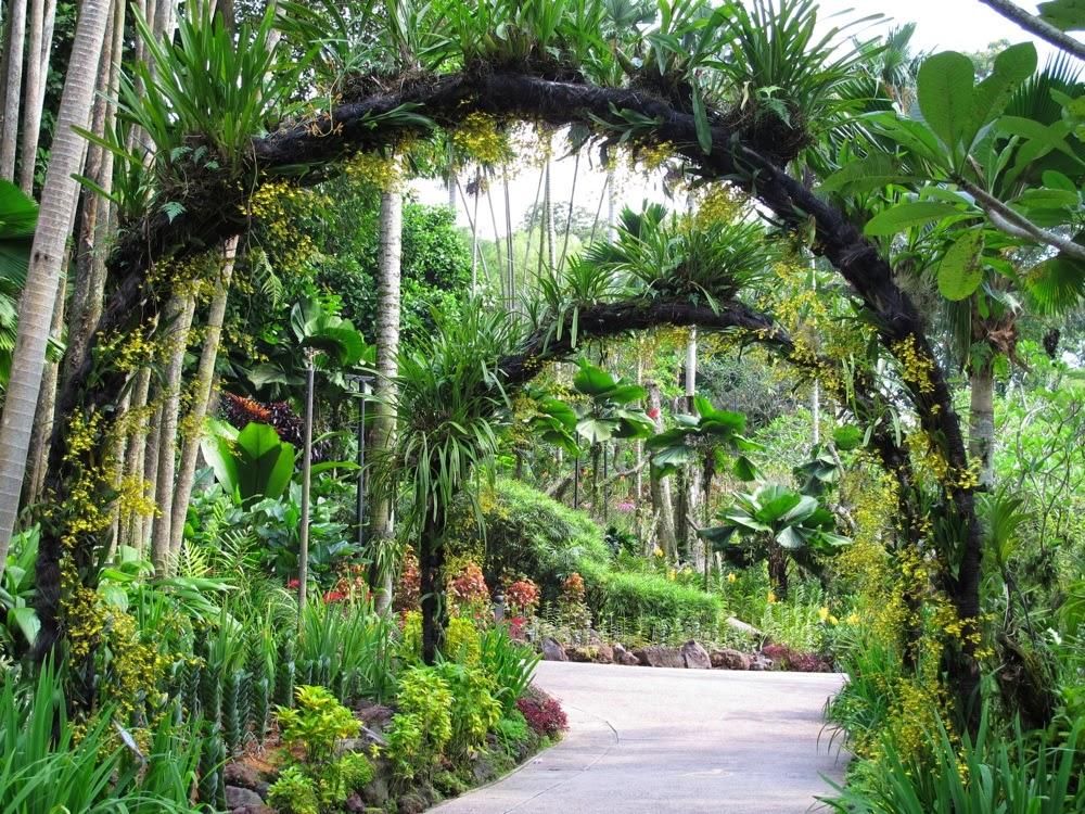 Serangkaian Kata Desain Taman Anggrek