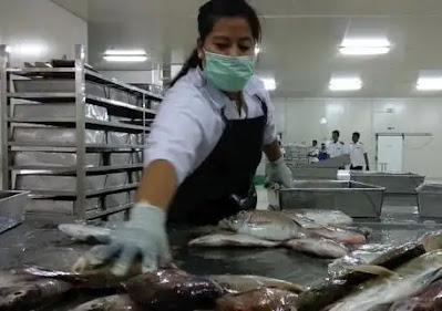Industri Pengolahan ikan