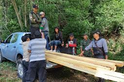 Tim Gabungan Anggota Kodim 1628/Sumbawa Amankan  Penebang Liar Hutan Sumbawa