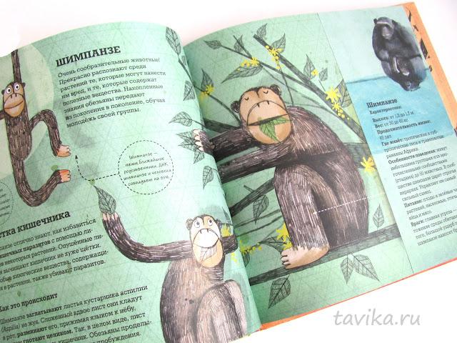 """отзыв об энциклопедии """"Животные-архитекторы"""""""