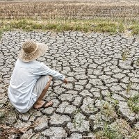 Drought farmer (Credit: © JoeyPhoto / Shutterstock) Click to Enlarge.