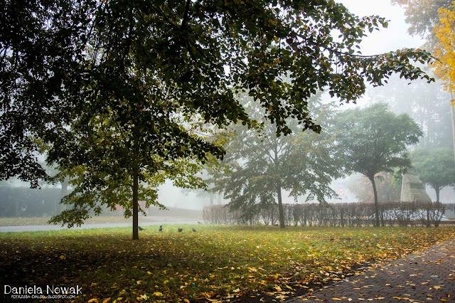 Park w Pyskowicach, we mgle