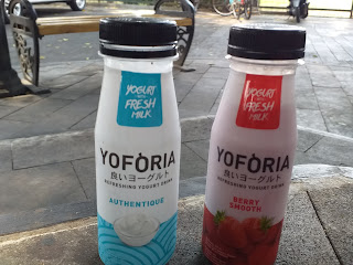 Review Yoforia Yogurt