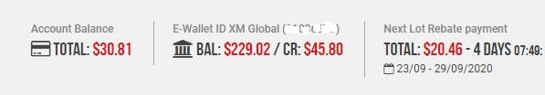 Pendapatan bulanan dari XM Forex affiliate