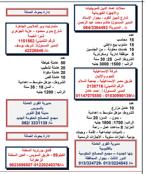 وزارة القوى العاملة، توفير 2424 فرصة عمل متوفرة حتى نهاية شهر مارس 2018