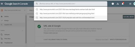 Cara Mengatasi URL Tidak Ada Di Properti Google Search Console simpel