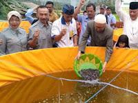 Santriwati Daar El Falah Diajarkan Budidaya Ikan Lele