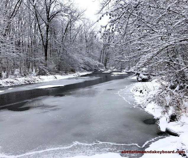 Ferson Creek meanders through an icy scene at LeRoy Oakes Forest Preserve in St. Charles, Illinois.