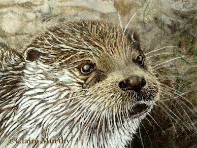 traditional fine art British wildlife otter