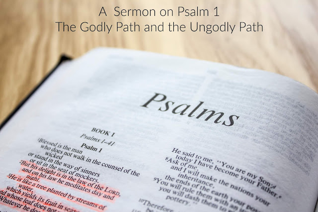 Psalm 1:  The Godly Path and the Ungodly Path