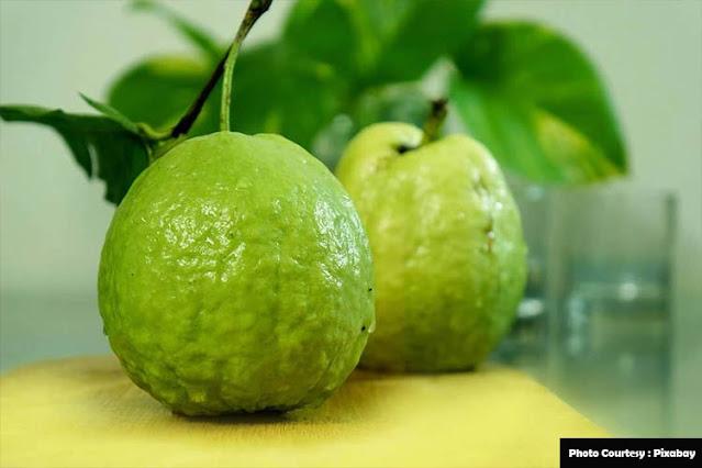 Top-Vitamin-C-Foods-Guava