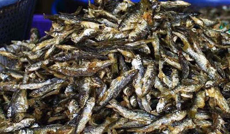 Ikan Bilih Singkarak