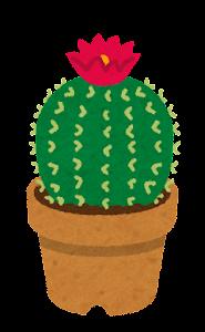 鉢植えのサボテンのイラスト3