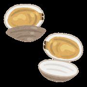 開いた貝のイラスト(あさり)