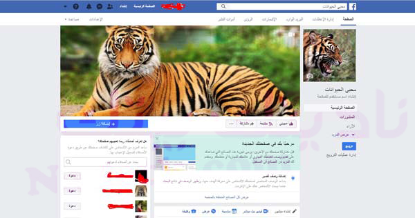 طريقة إنشاء صفحة فيس بوك وضبطها باحترافية 2020