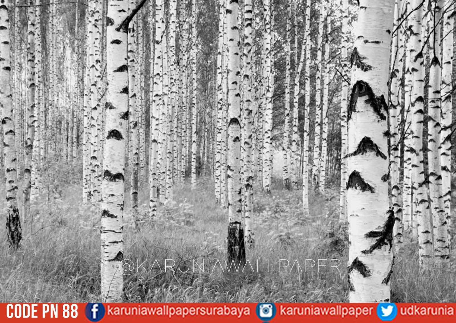 wallpaper dinding hutan hitam putih