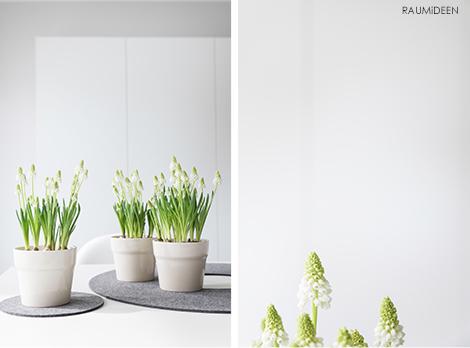 Grüne Deko für den Frühling!