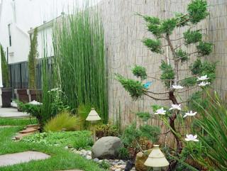Gambar rumah minimalis dengan halaman yang luas