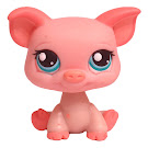 Littlest Pet Shop Singles Pig (#361) Pet