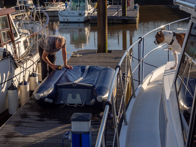 Photo of Phil washing our dinghy - watched by Ruby 😊